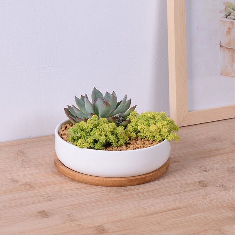 Modern Simple White Ceramic Shallow Flower Pot With Bamboo Tray