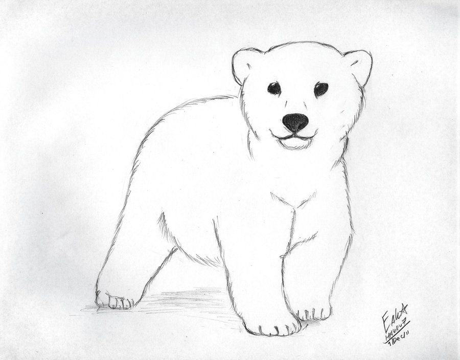 Polar Bear Clip Art Polar Bear Cub By Hauru7 On Deviantart