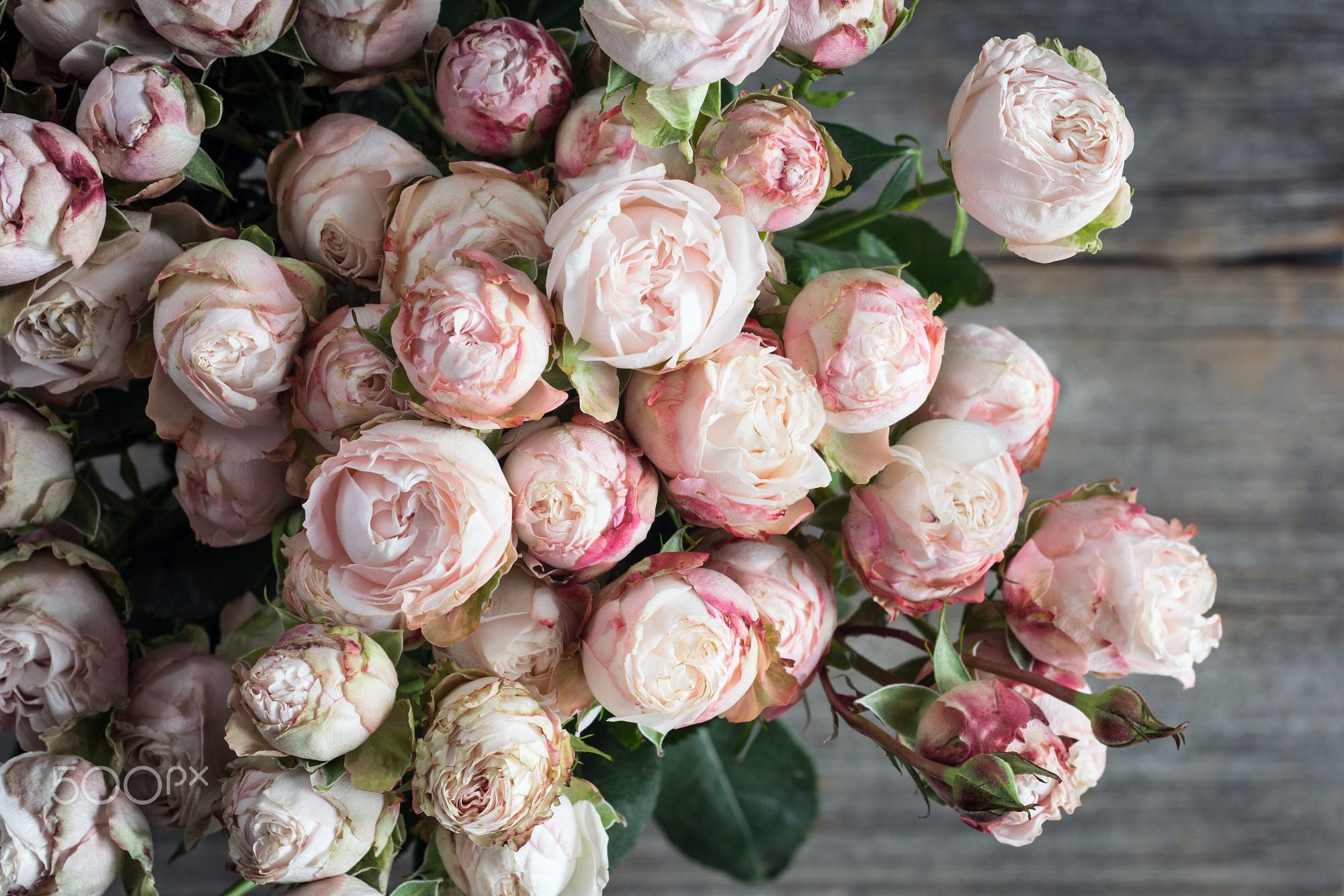 Bouquet Of Pink Roses On Old Wooden Background Closeup View