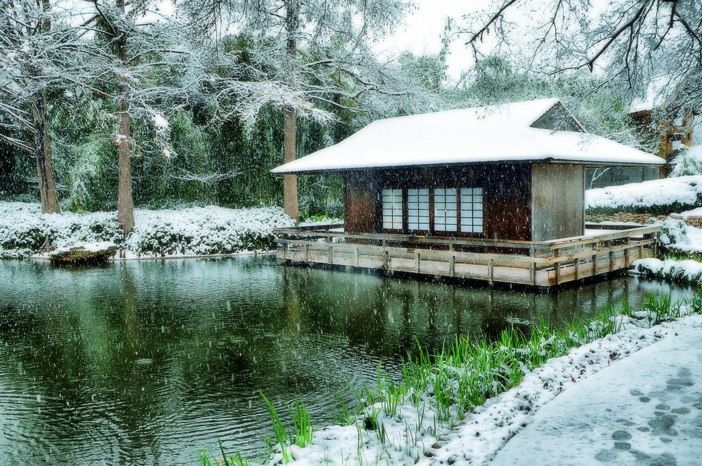 Japanese garden house szukaj w google garden for Japanese tea house garden design