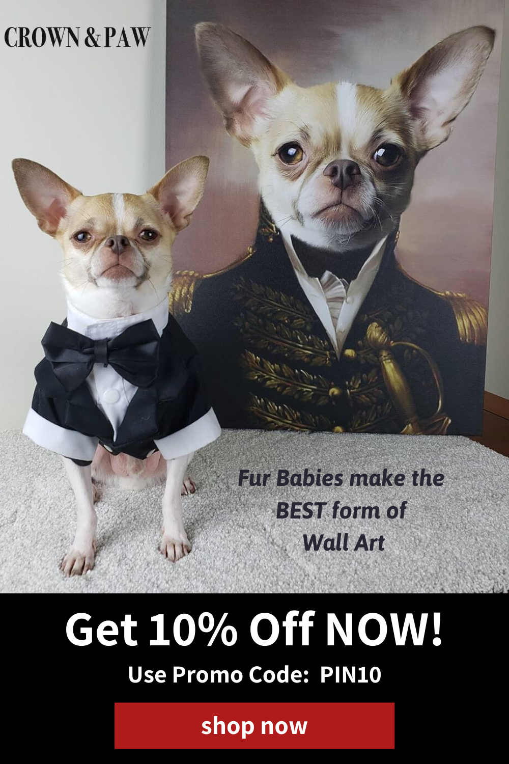 Shop 10 Off Custom Printed Pet Portraits Use Promo Code Pin10 At Checkout Put Your Pet On An Incredible One In 2020 Cute Dogs And Puppies Cute Funny Animals Pets