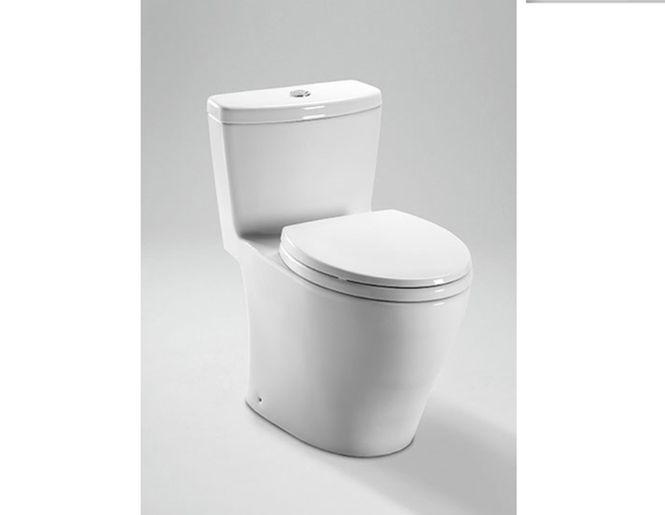Toilette monopièce à double chasse Aquia - Toto | Projets à essayer ...