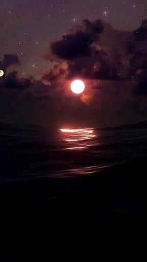 Moon light and the ocean