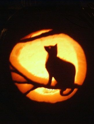Cat and moon on pumpkin black cats and cat for Cat carved into pumpkin