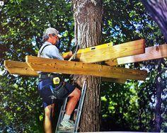 construire une cabane dans les arbres le guide les m thodes les cabanes construction. Black Bedroom Furniture Sets. Home Design Ideas