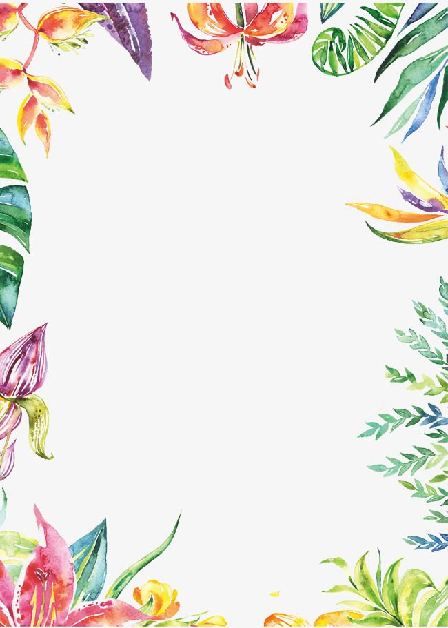 Hand Painted Colorful Plant Borders Watercolor Border Hand Painted Plants Pop Png Transparent