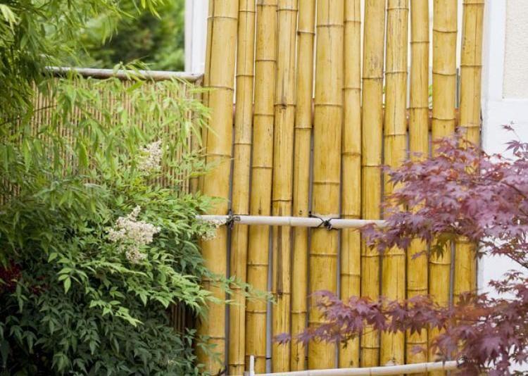 Fabriquer un brise vue en bambou brise vue brise et bambou for Paroi bois jardin