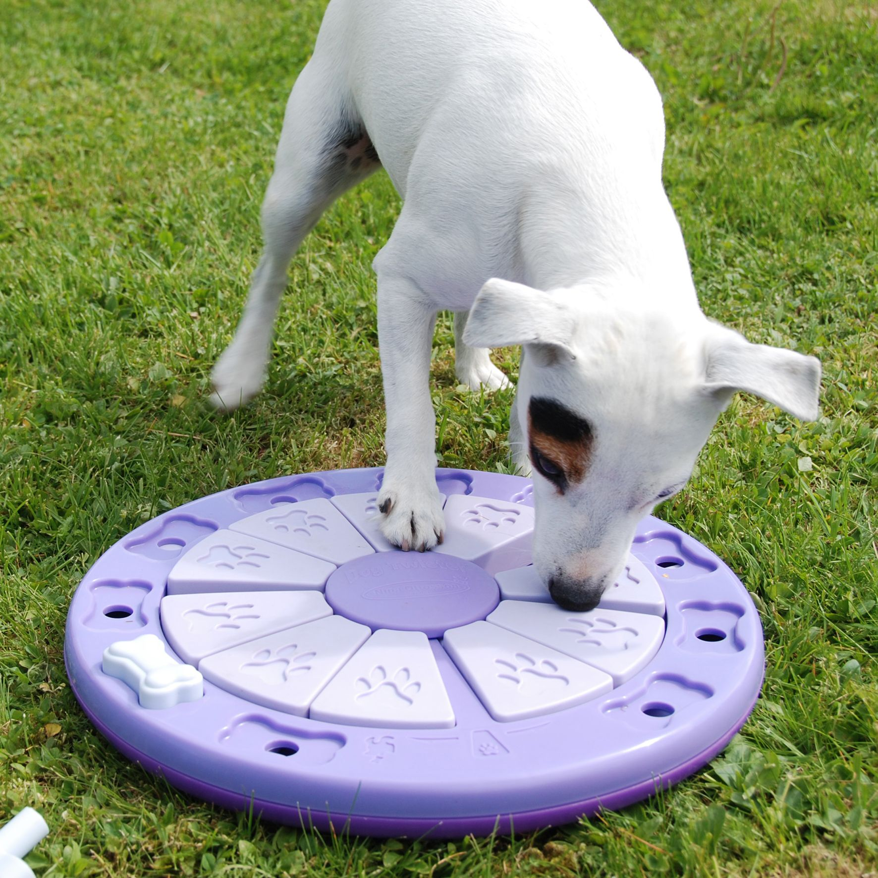 Nina Ottosson Dog Toys Shop Nina Ottosson Story Dog Toys Dog