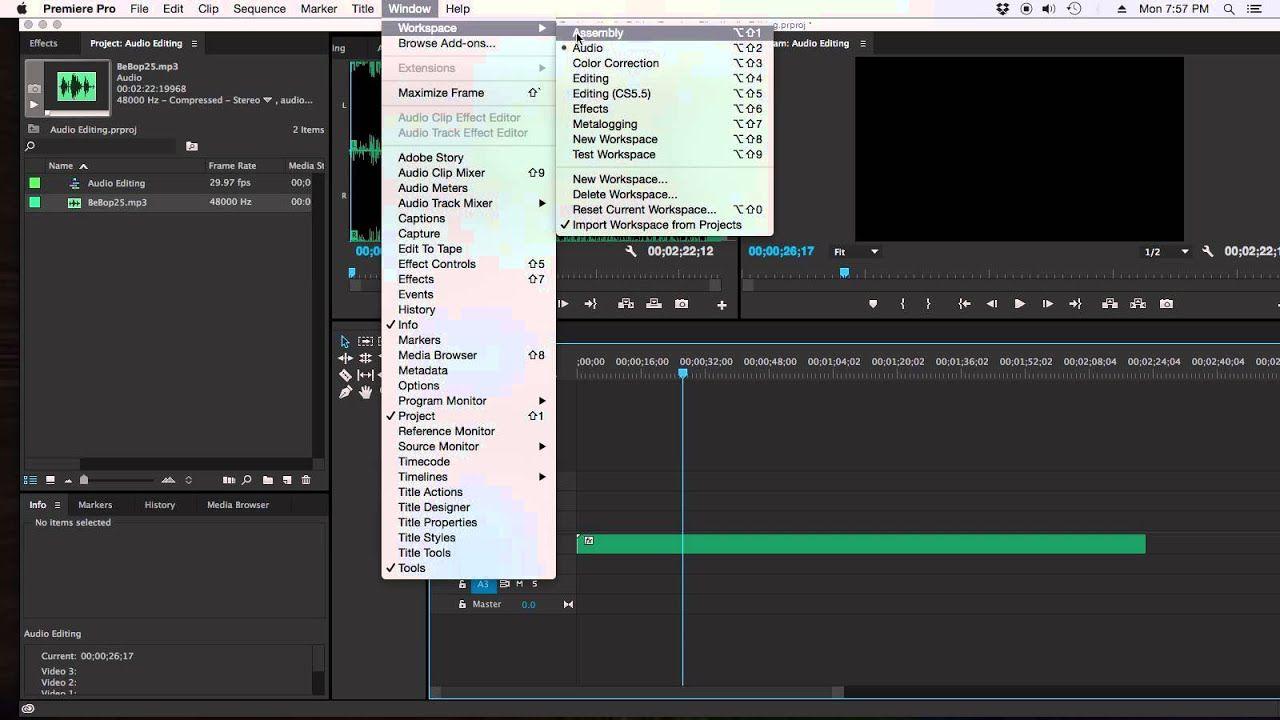 How to edit audio in Adobe Premiere Pro CC Premiere pro