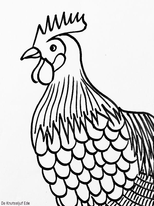 kippen kleurplaten kleurplaten kippen kip knutselen