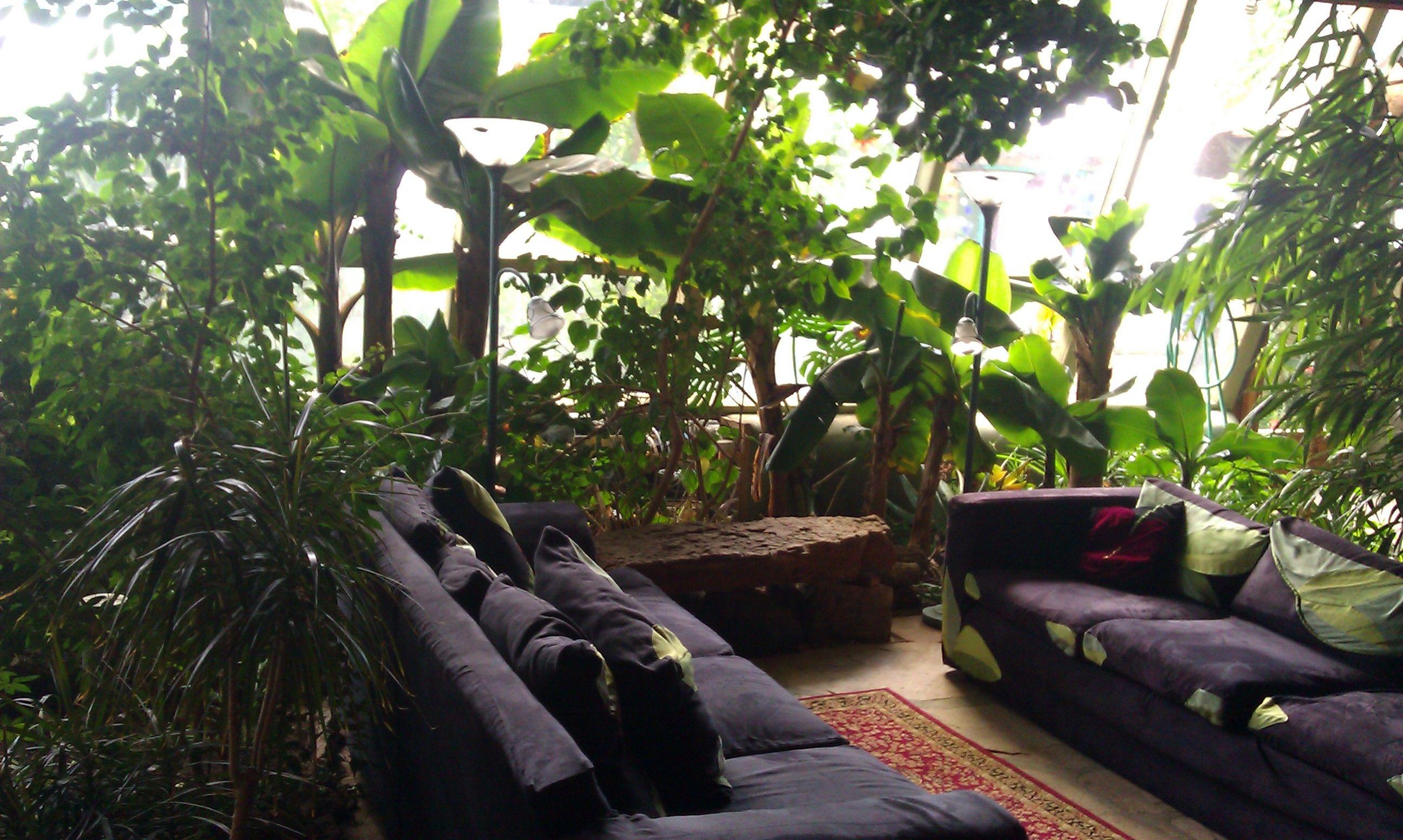 Résultats De Recherche Du0027images Pour « Living Room In A Greenhouse »