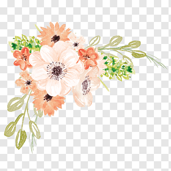 Watercolor Painting Flower Watercolor Flowers White And Orange Flowers Free Png Watercolor Flowers Paintings Poppy Flower Painting Watercolor Flowers