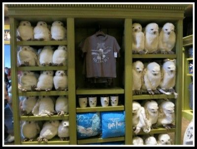 b299f74bb Shopping in Diagon Alley at Wizarding World of Harry Potter - Magical  Menagerie