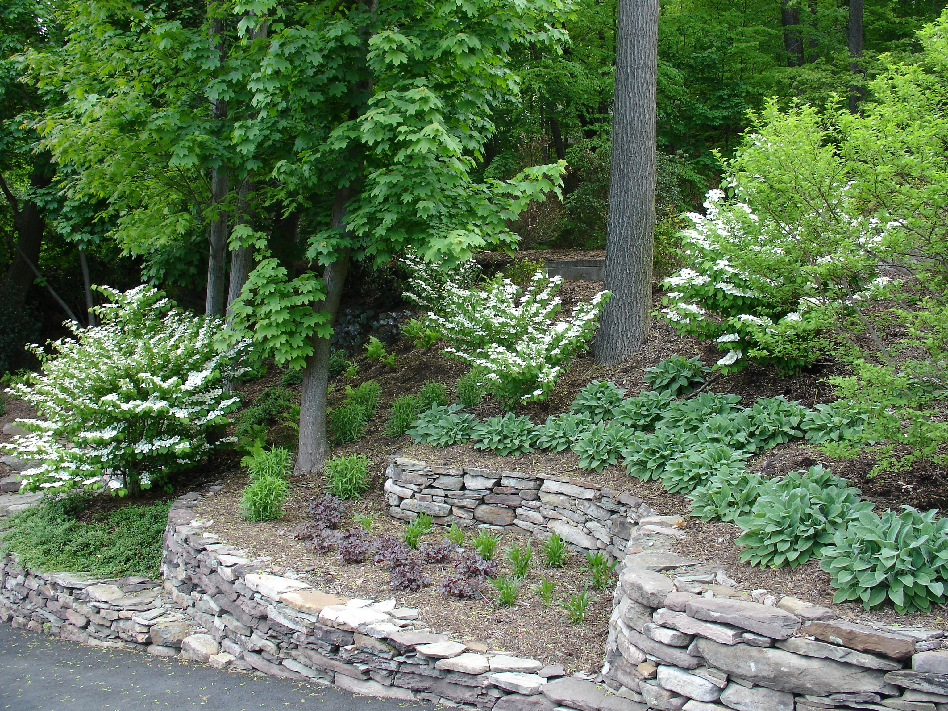 tiered yard landscaping project