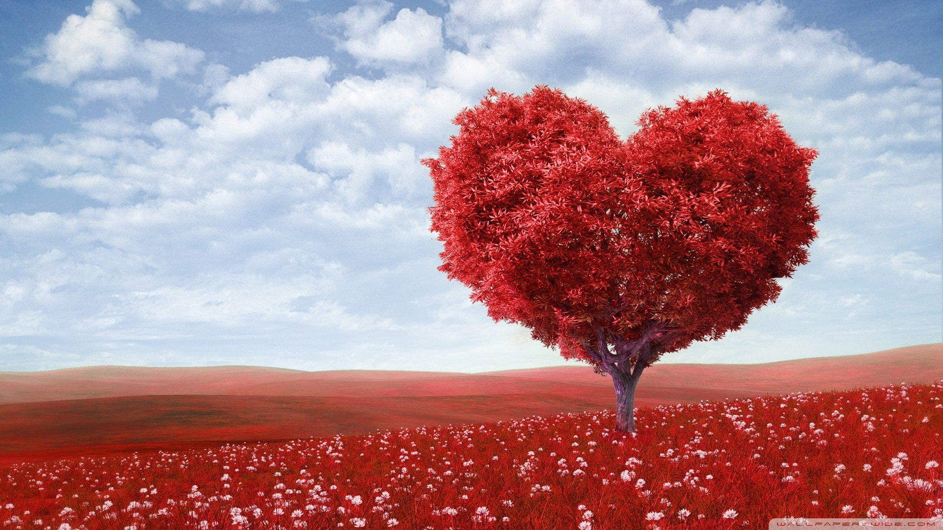 Beautifull Of The Love Tree Hd Wallpaper 1920x1080 See More On Classy Bro Love Wallpaper Heart Tree Red