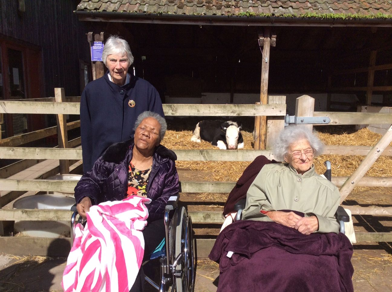 Down on the farm for Riversway - Riversway Care Home Bristol