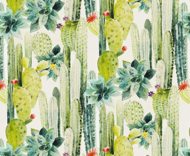 Les Papiers Peints Du Moment Cacti Pierre Frey And Paper Walls