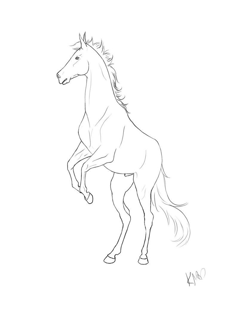 Gaited Horse Lineart Google Search Horse Coloring Pages Horse Coloring Books Horse Coloring [ 1038 x 770 Pixel ]