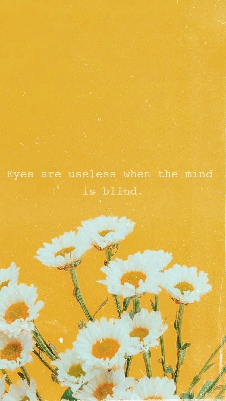 Sans Titre Wallpaper Quotes Sunflower Wallpaper Sunflower Quotes Flower wallpaper with quotes