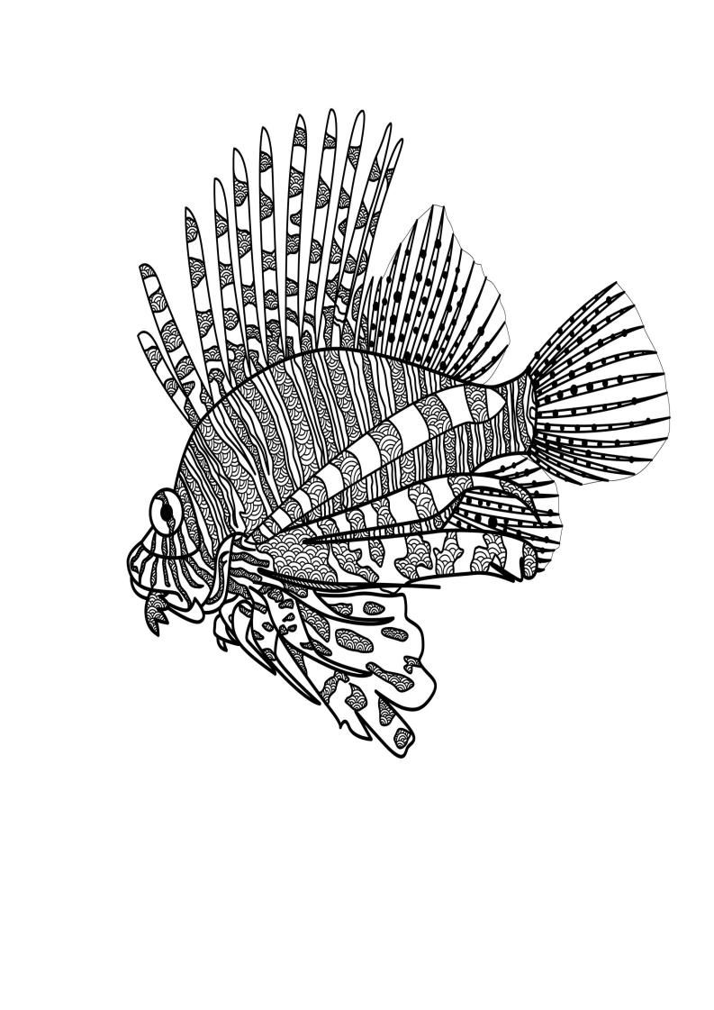 Mindfulness Coloring Fish Fish Coloring Page Mindfulness Colouring Coloring Book Pages