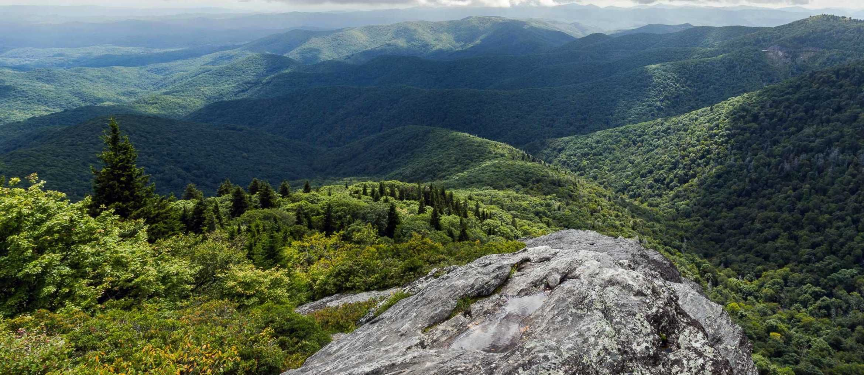 Asheville blue ridge parkway top 10 favorite hikes to