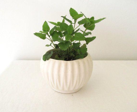 Vintage Ivory Planter Antique Flower Pot By Allthingswhite Flower Pots Vintage Flower Pots Planters