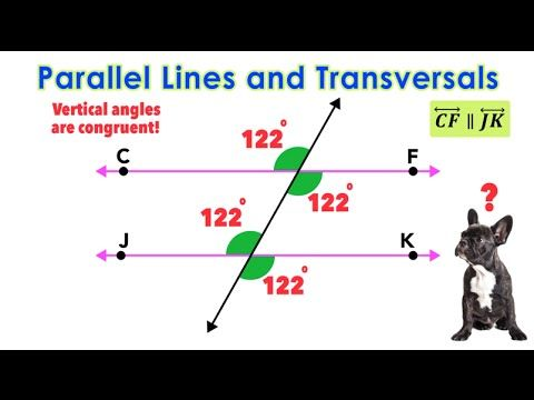 ☆ Parallel Lines Cut By Transversals Exploring Angle