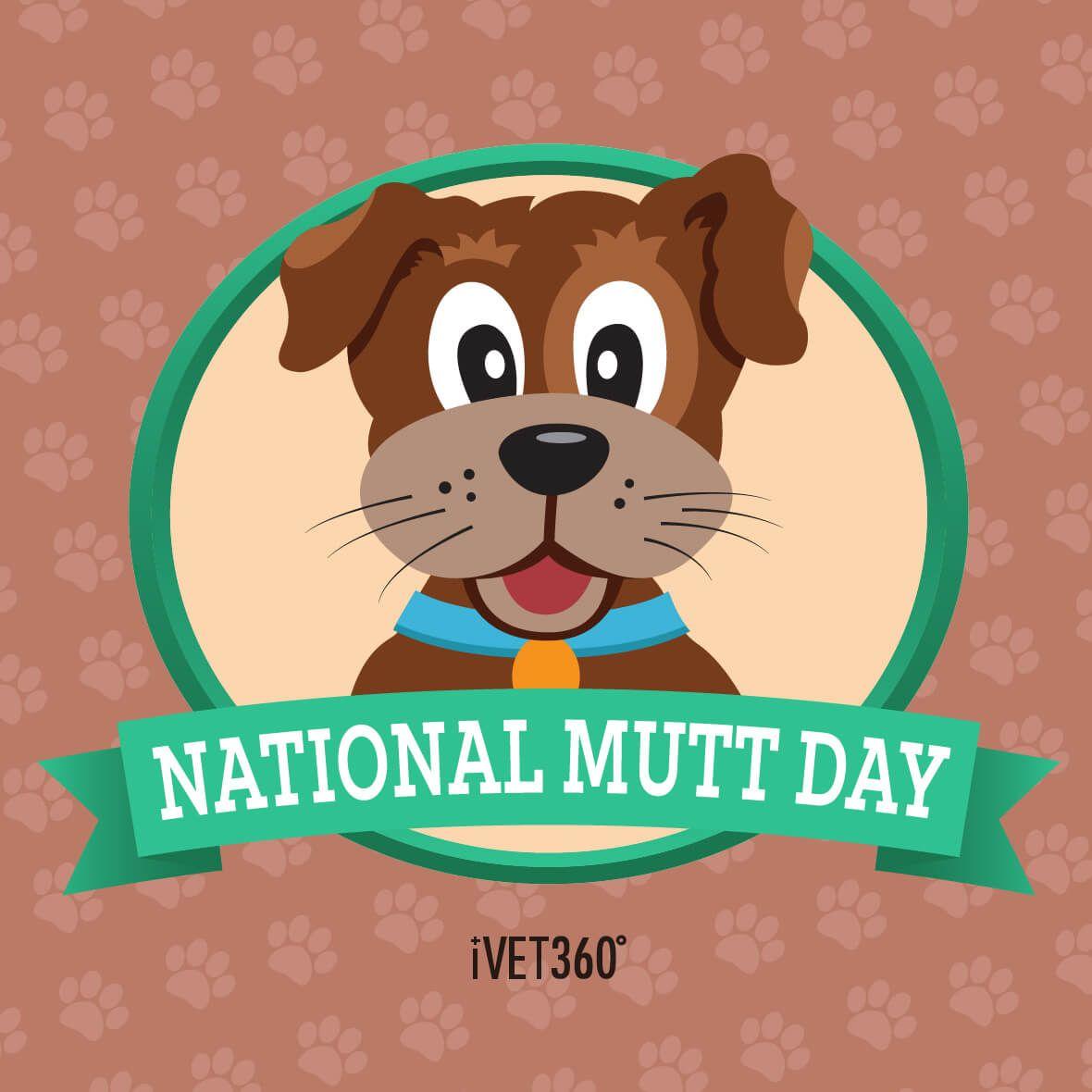 National Mutt Day National mutt day