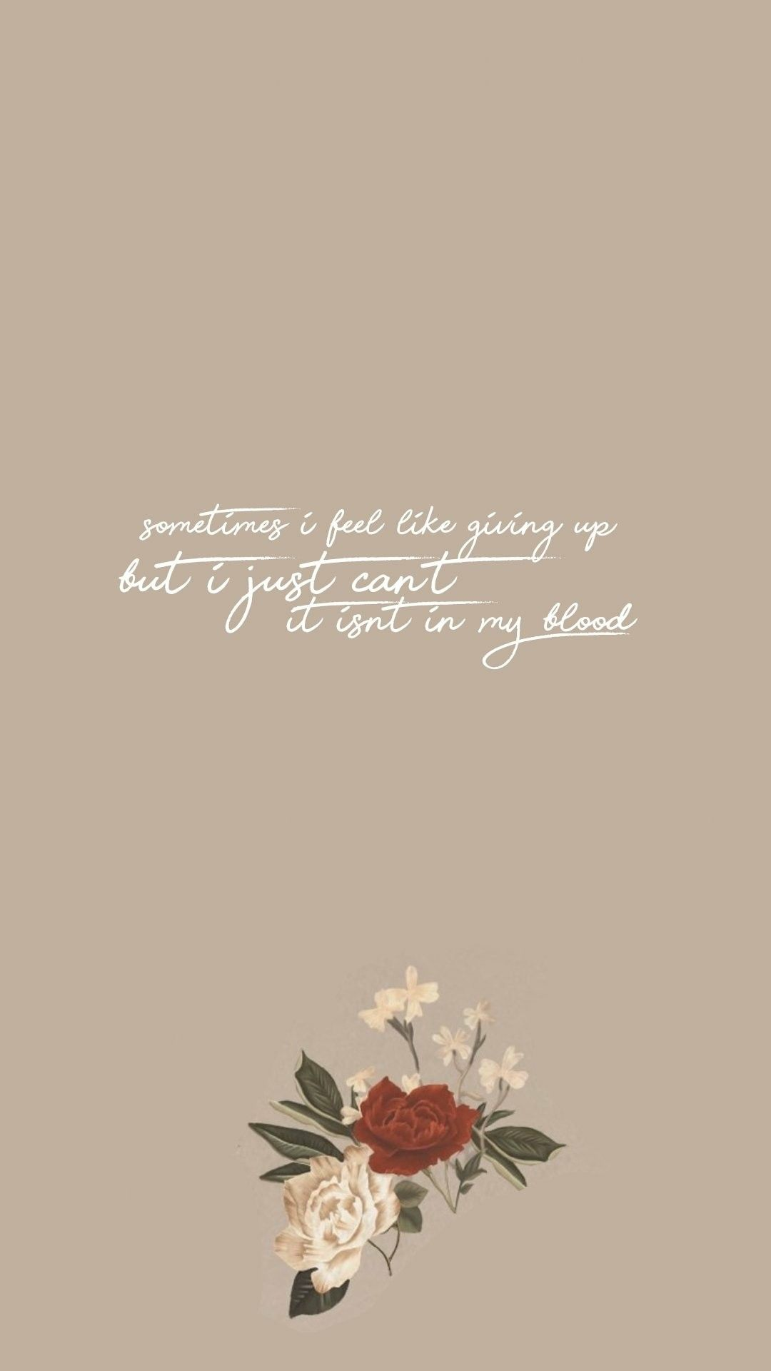Pin by american shorthair on quotes pinterest shawn mendes