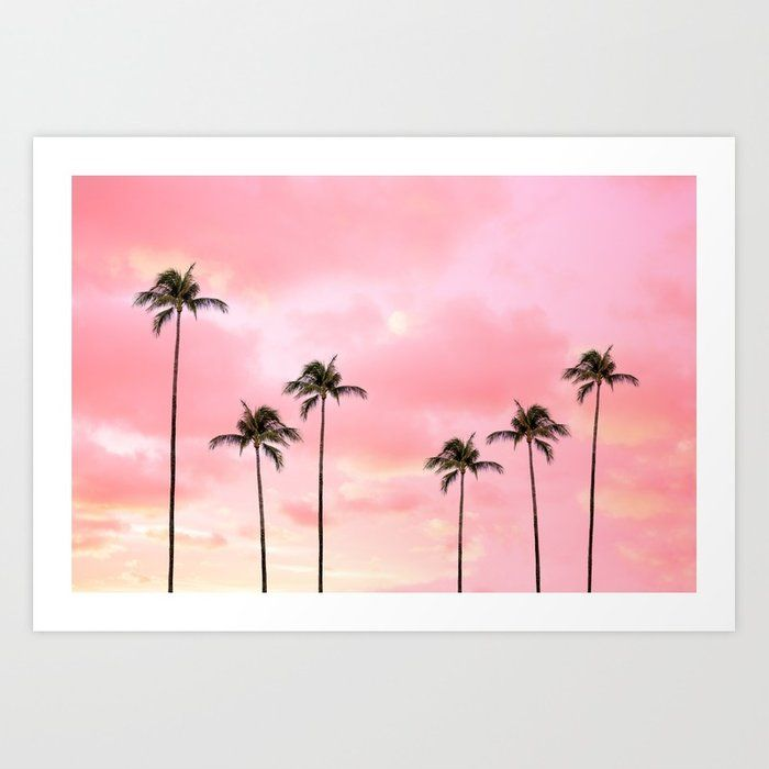 Palm Trees Photography | Hot Pink Sunset Art Print by wildhood