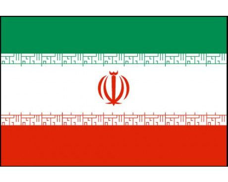 Buy Iran Flags Iran Flag Iranian Flag Flags Of The World