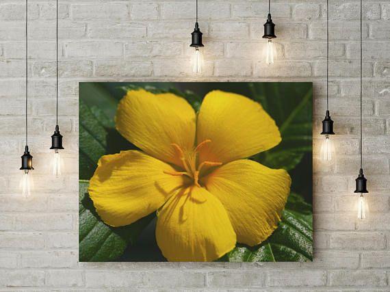 Yellow Flower Metal Art, Yellow Flower Photo, Botanical Print ...