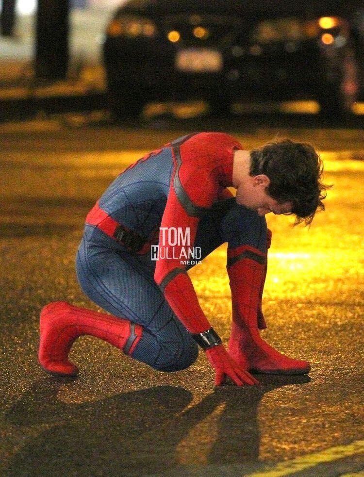 Peter Parker x reader : Stark's - #3 Stark's staring   Cute