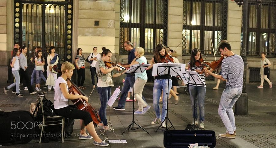 Young Musicians By Betina Young Musician Musician Young
