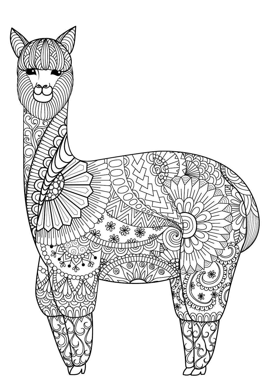 Colour Calm 10 Sampler Coloring Books Mandala Coloring Pages Alpaca Drawing
