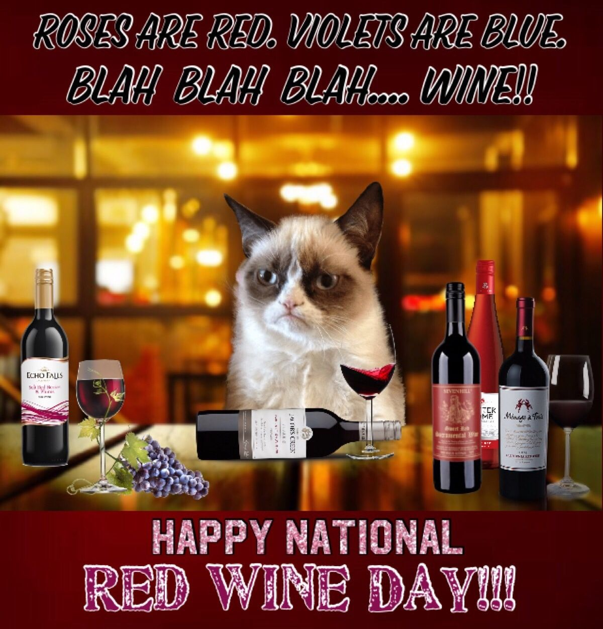 Grumpy Cat Says Happy National Red Wine Day!! 🍷🍷🍷 (With