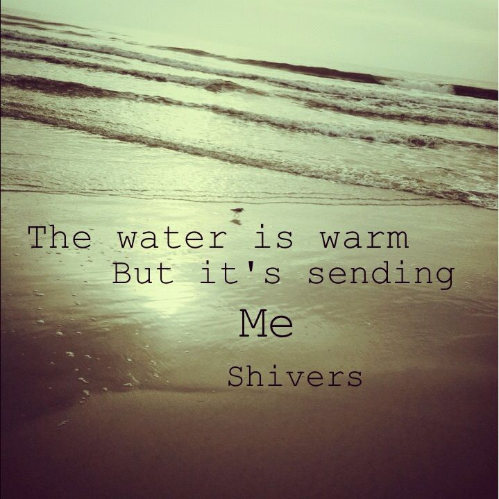 Mgmt lyrics at the beach | quotes, memes, pictures, funny ...