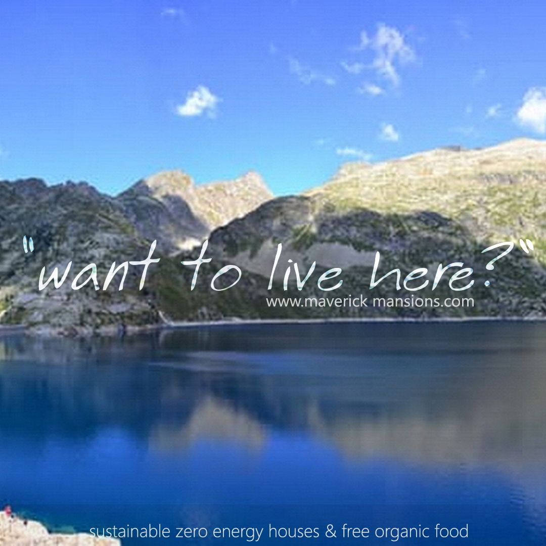 Move in a  zero emery, sustainable house. find out how to live in the nature ...forest, lake wetland.