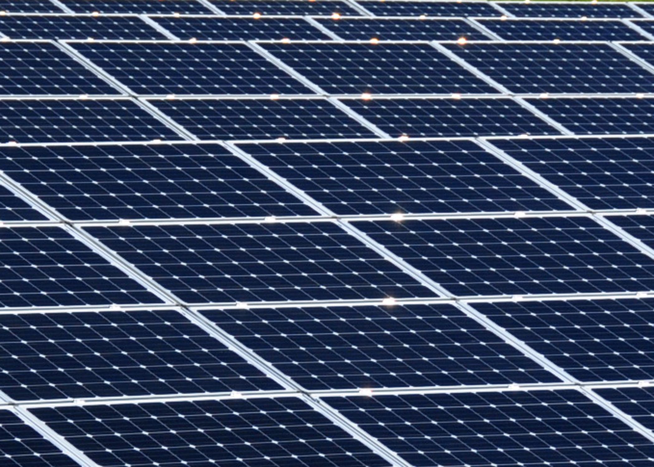 Florida Voted Against A Controversial Solar Energy Bill Green Eco Sustainable Solar Panels Solar Power Solar Installation