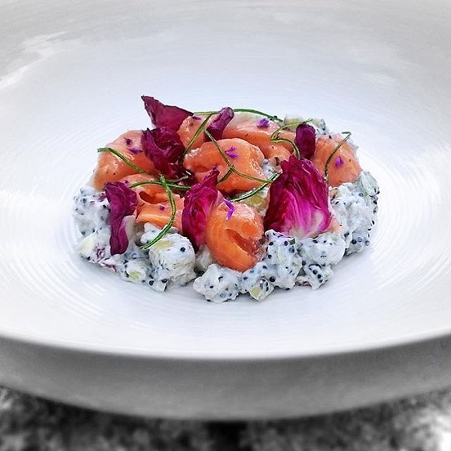 Limoncello cured salmon, potato salad, horseradish, fried leek strips, caviar and radicchio   via @cookniche #cookniche #chefsofinstagram #chefsroll #theartofplating #gastroart #gastronomia #instachef #instafood #salmon #foodgasm #foodporn #beautifulcuisines #gourmet #foodart #yum #foodpics #foodie #gourmetartistry