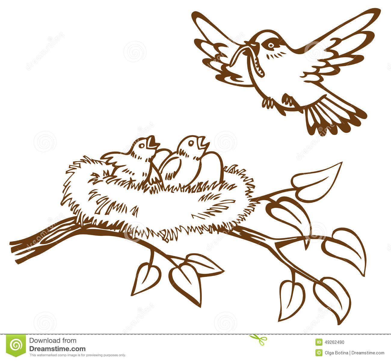 vogelnest tekening zoeken dieren