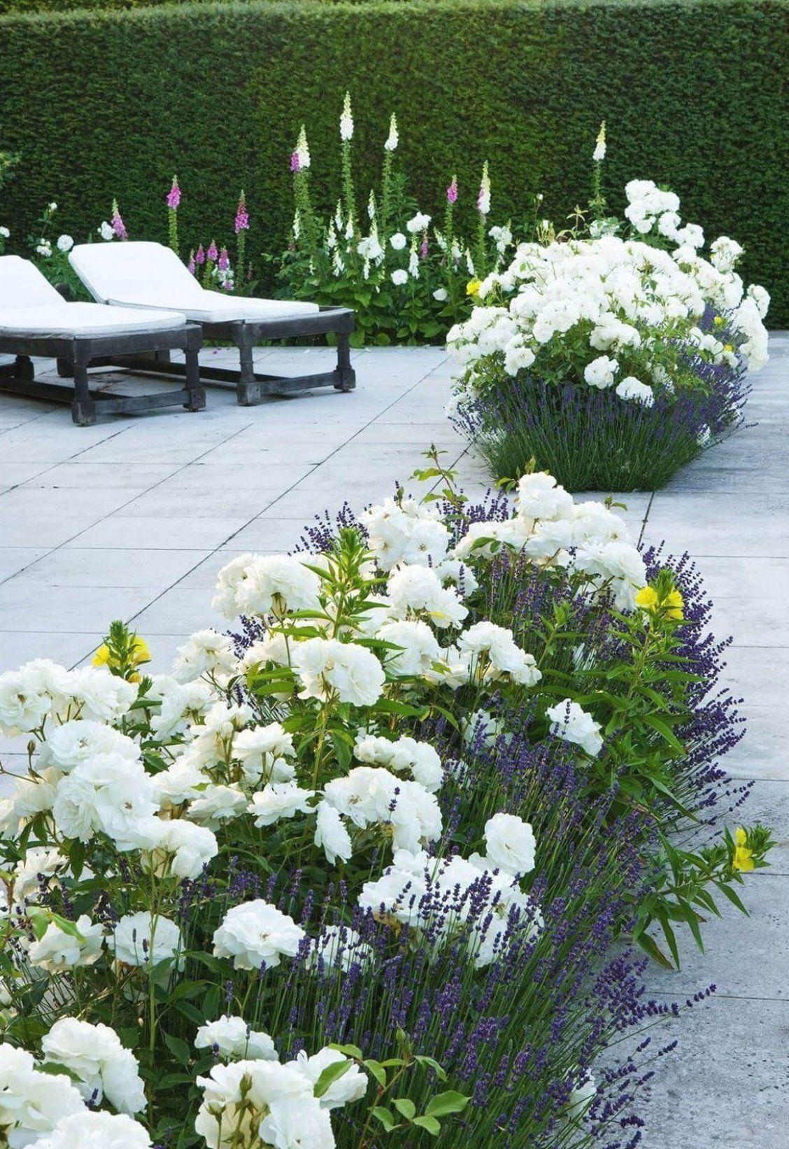 Baby Shower Decorating The Affordable Way Home Decor Ideas Modern Design 1 Rose Garden Landscape Flower Beds Evergreen Garden