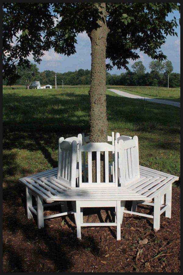 Tree bench made from kitchen chair.  DIY.