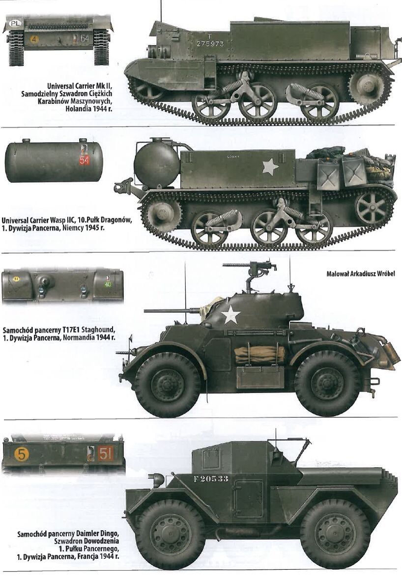 The Polish Tank 1st Division, Black Devil