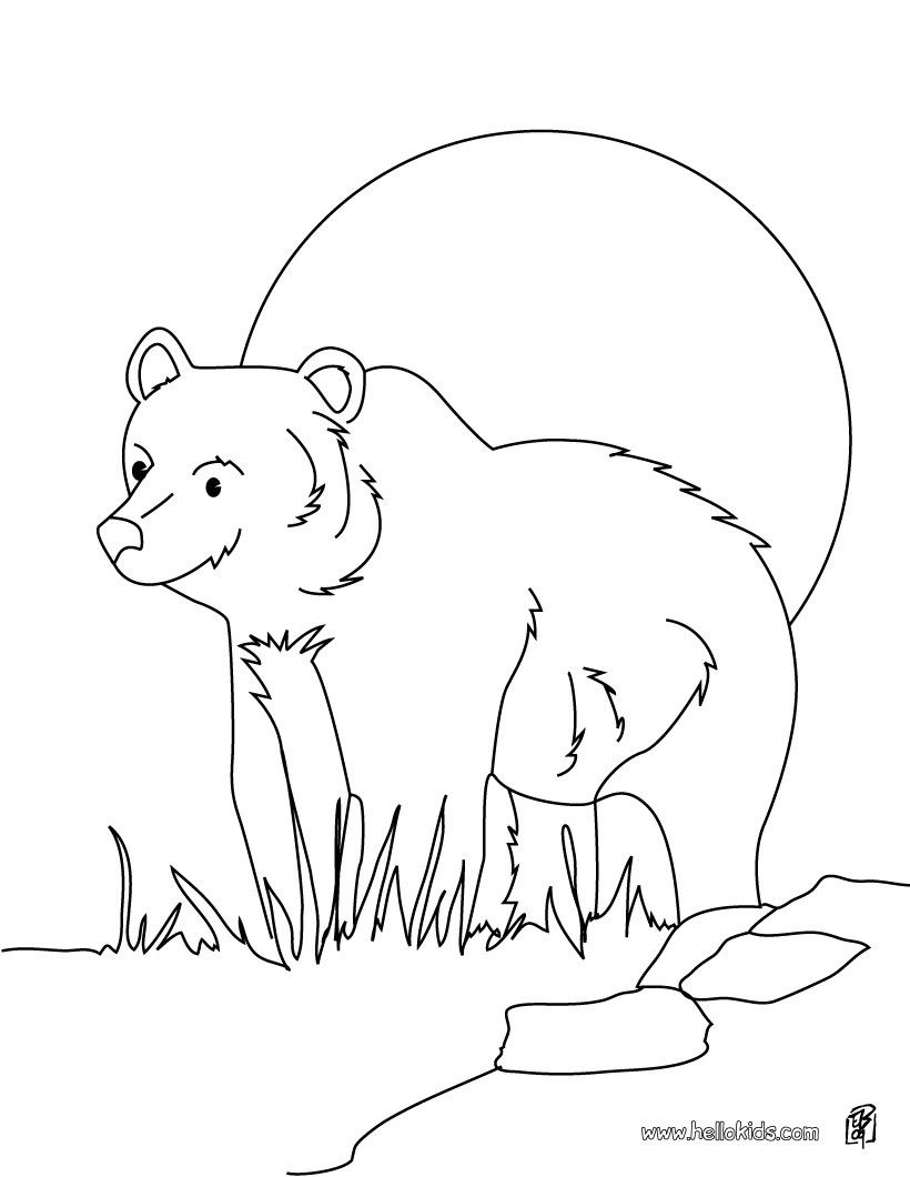 Grizzly Bear Coloring Page More Forest Animals Coloring Sheets On Hellokids Com Animal Coloring Pages Bear Coloring Pages Teddy Bear Coloring Pages