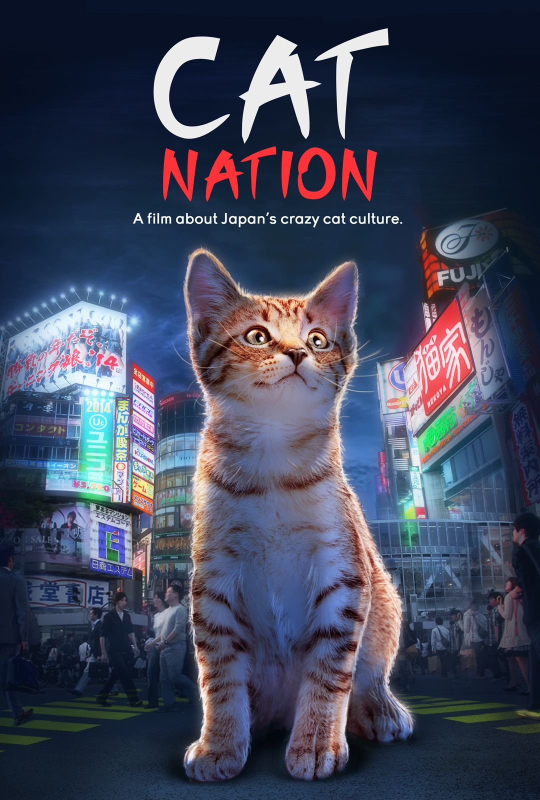 Cat Nation Cat Daily News Cats, Crazy cats, Pets movie