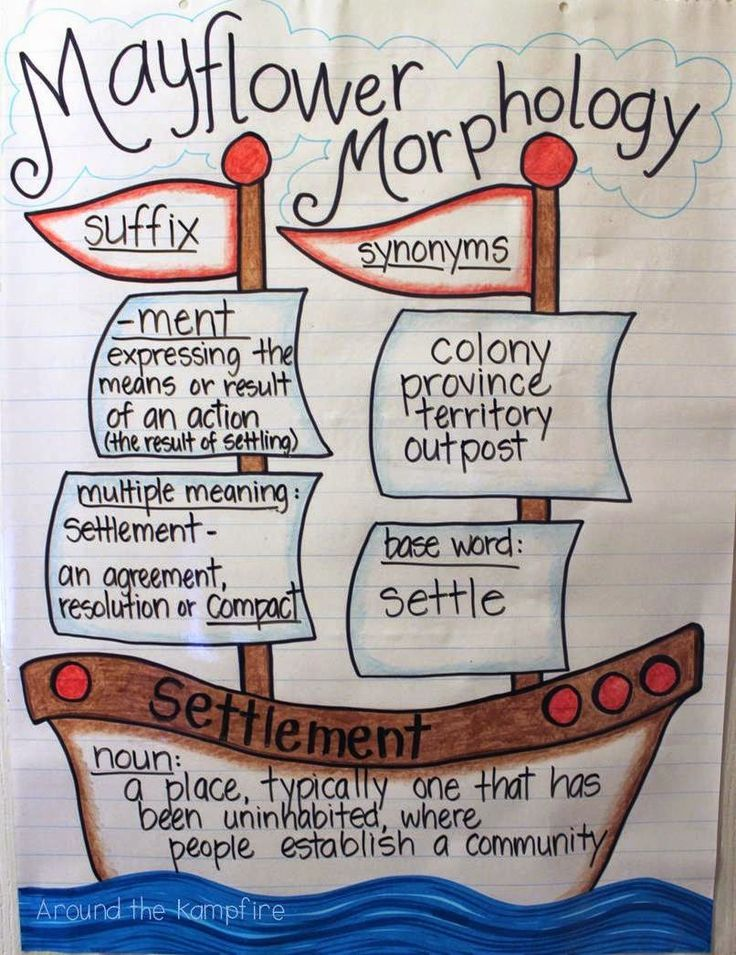 Mayflower Morphology and a Thanksgiving Mish Mash | Beyond the
