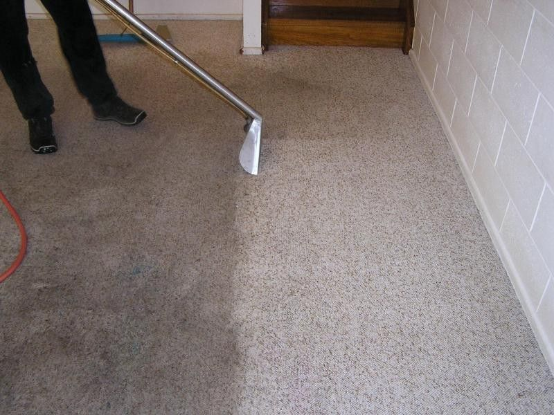 Expert Cleaners From This Reputed Carpet Cleaning Perth Service Will Use The Right Equipment And Non