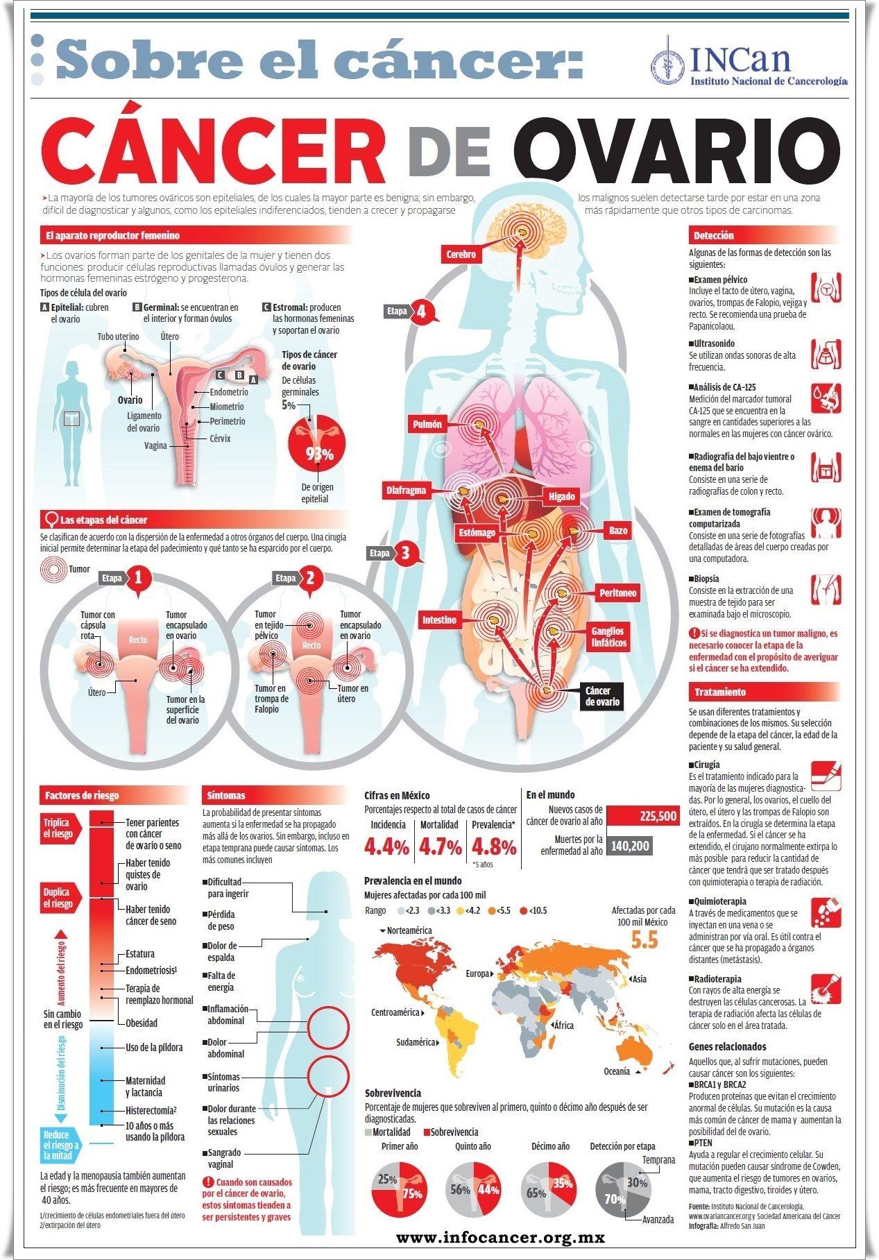 Infocáncer. Infografía Cáncer de Ovario | DATOSCURIOSOS/medicina ...
