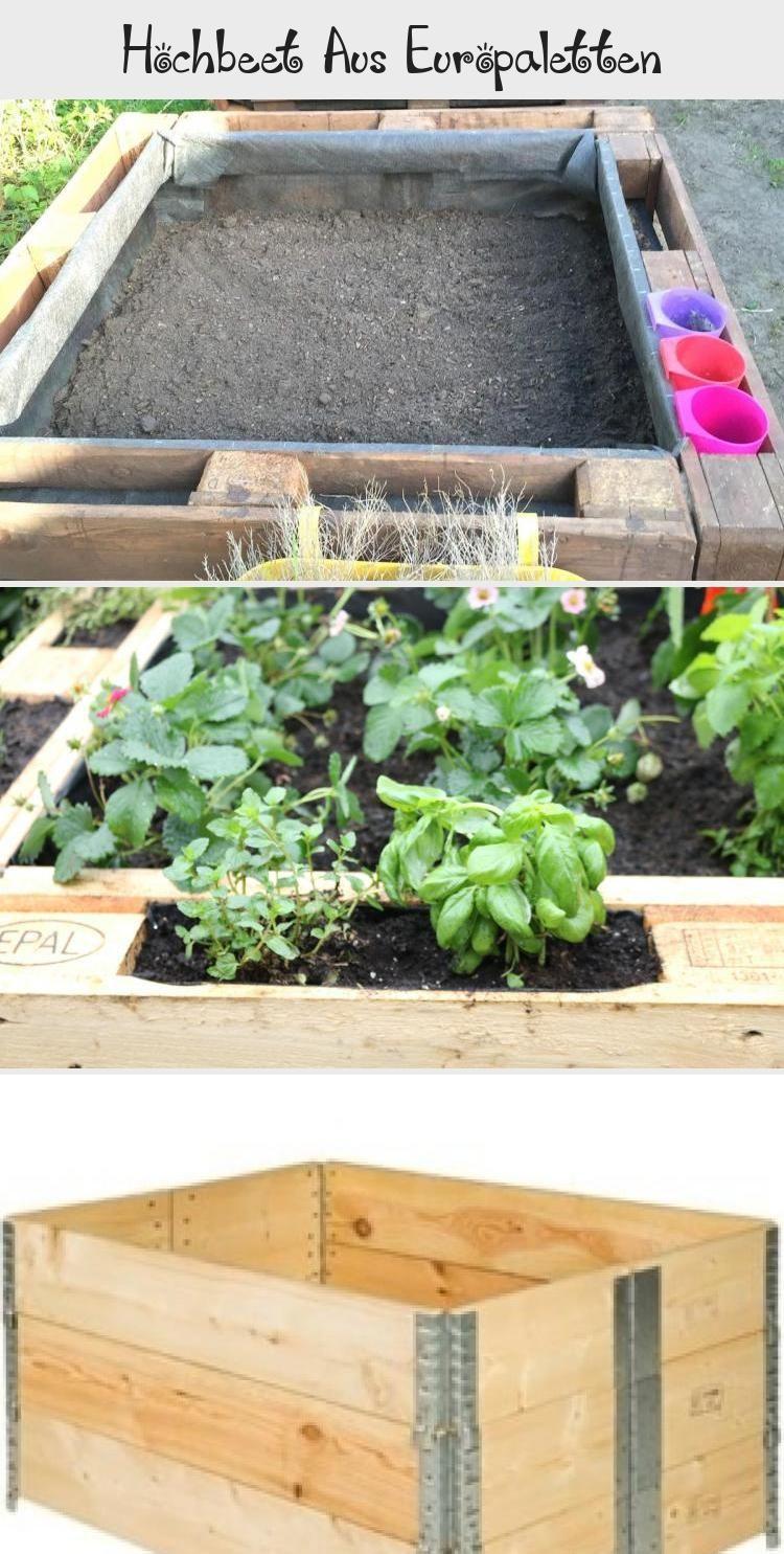 Hochbeet Aus Europaletten In 2020 Garten Ideen Garten Plants